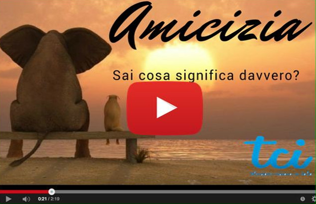 Youtube Amicizia